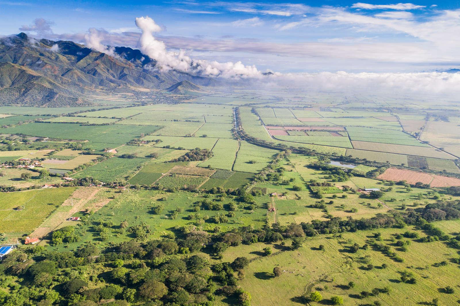 Roldanillo Valle del Cauca