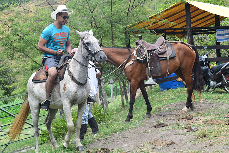 "Horseback riding ""Las Huacas"""